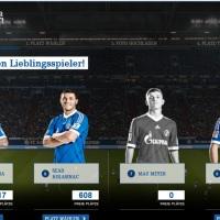 Odlična kampanja Schalkea 04!